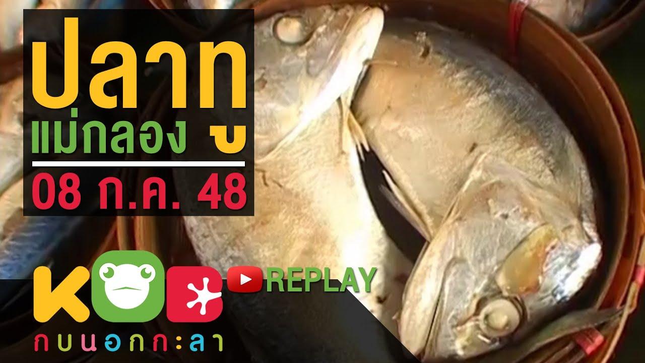 กบนอกกะลา REPLAY : ปลาทูแม่กลอง ช่วงที่ 4/4 (8 ก.ค. 48)