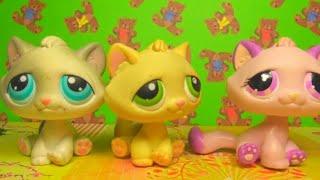 LPS: Мои Тебби коты (сидячие кошки ЛПС)