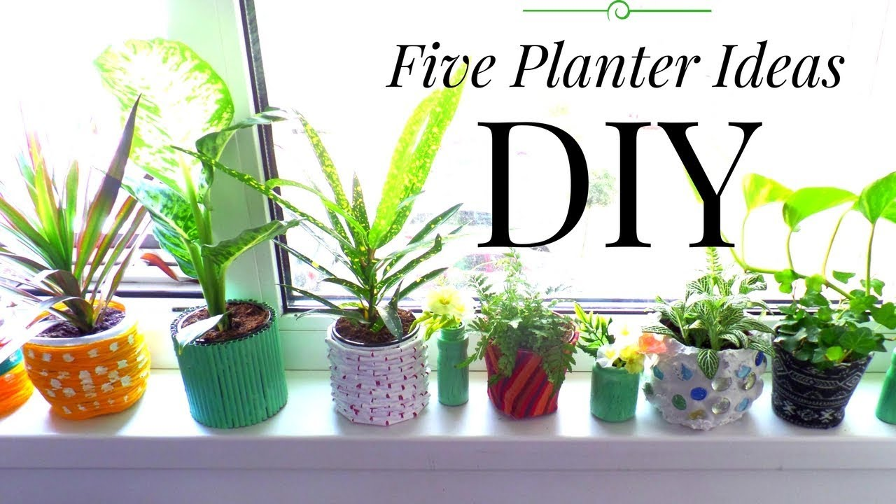 Five Planter Plant Pot Ideas Using Recycled Materials