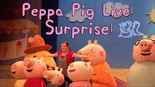 new-peppa-pig-live-surprise-show-at-the-rosemont-theater