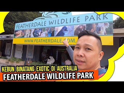 wow-!!!-kebun-binatang-exotic-di-australia- -travel-ke-featherdale-wildlife-park