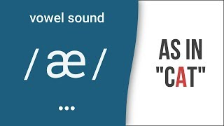 Vowel Sound æ as incatAmerican English Pronunciation