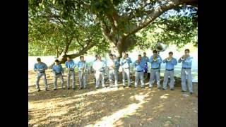 Banda Ojitos Negros de Jamay Jalisco - El Zapatito