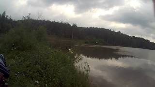 загородный пруд трёхгорного ловим плотву на перловку.