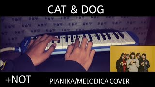[NOT] TXT - CAT & DOG PIANIKA/MELODICA COVER