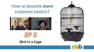 Episode 5 - Birdcage
