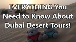 Dubai Desert Tours: EVERYTHING You Need to Know!   2bearbear.com