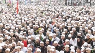 Maulid Nabi Muhammad SAW  Majelis Rasulullah SAW 2014