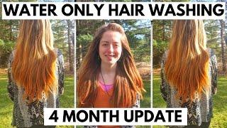 Video WATER ONLY HAIR WASHING-4 MONTH UPDATE download MP3, 3GP, MP4, WEBM, AVI, FLV Juni 2018