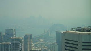 Sydney chokes through another day of 'hazardous' air quality