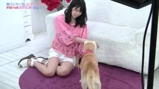 AKB48 team8の千葉県代表として活躍中の吉川七瀬ちゃん。 レッスン、ラ...