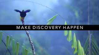 Thank You for Making Discovery Possible