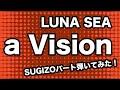 a Vision(LUNA SEA)/SUGIZO part cover