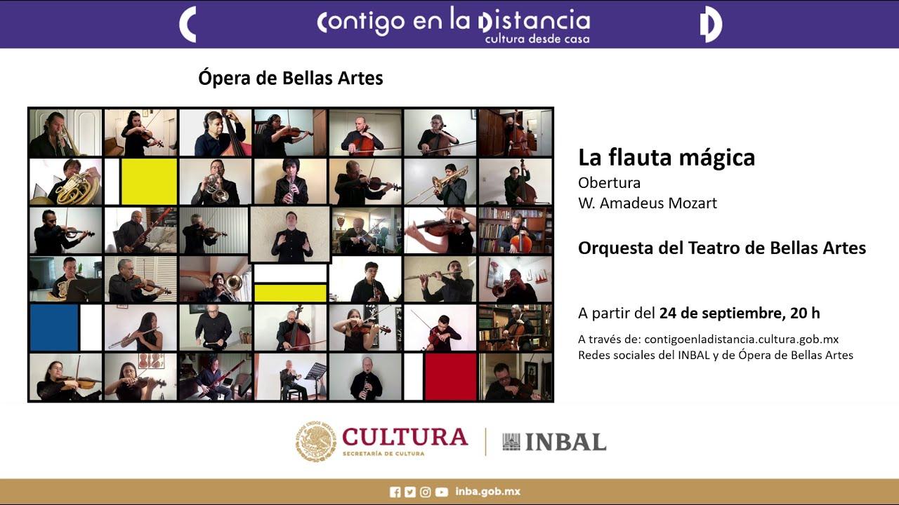 Mozart en tu casa, con la Orquesta del Teatro de Bellas Artes