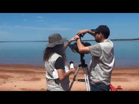 Strange documentary highlights curvature test that may prove useful