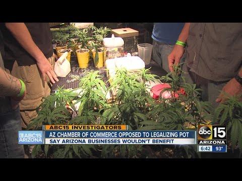 Arizona Chamber of Commerce opposed to legalizing pot
