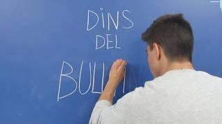 Dins del Bullying (Acompanyament Projecte de Recerca Escola Mestral)