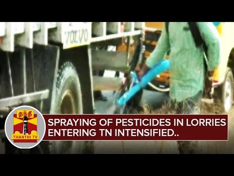 Spraying of Pesticides in Lorries entering TN intensified after Bird Flu rumours | Thanthi TV