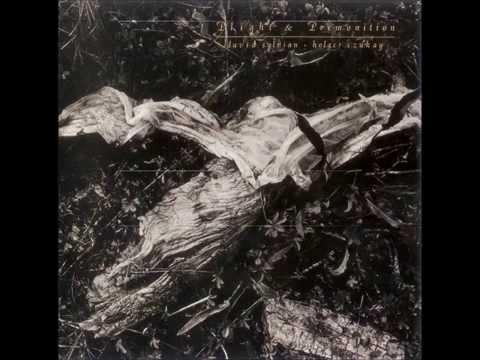 David Sylvian and Holger Czukay - Premonition