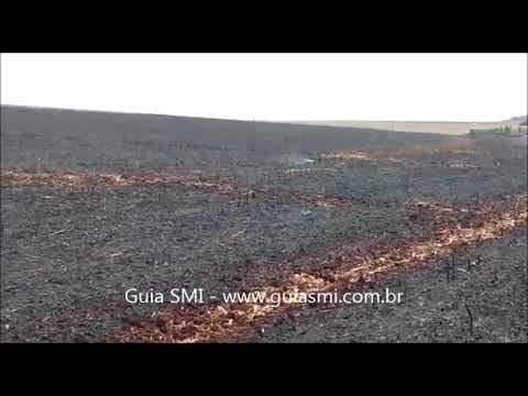 Bombeiros combatem incêndio ambiental de grandes proporções no interior de São Miguel do Iguaçu