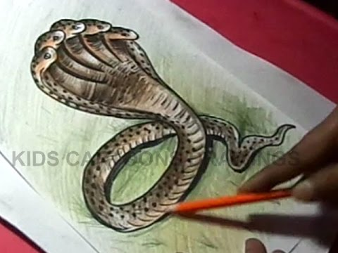 Realistic Snake Head Drawing