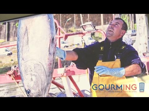 Producer on Gourming : Recettes de la mer