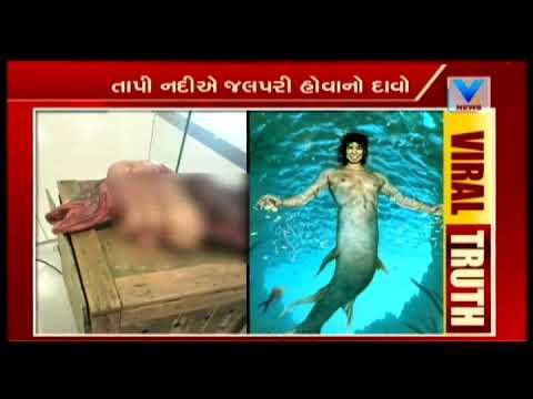 Know truth behind Jalpari in Tapi River, video going viral on social media | Vtv News