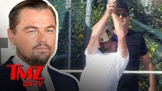 Leonardo DiCaprio Get's a Ball To The Face | TMZ TV