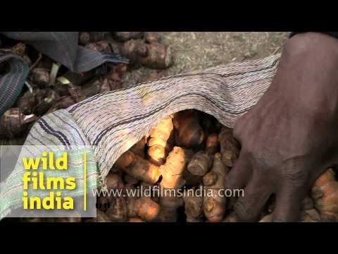 Tribal people of Assam and Meghalaya exchanging their items - Jonbeel mela