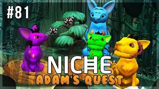 A Colorful Collection of Frogs!   Niche Let's Play • Adam's Quest - Episode 81