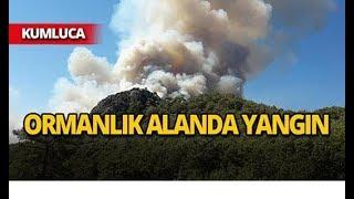 Antalya Kumluca'da Orman Yangını; Vatandaşlar Müdahale Ediyor