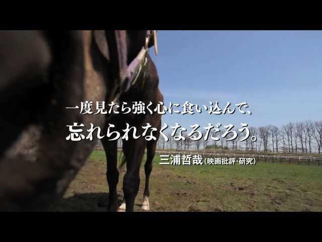 映画『祭の馬』予告編
