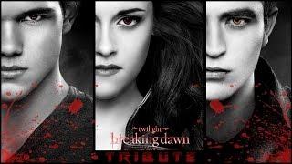 Twilight Saga  Tribute  Hd