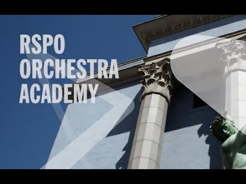 RSPO Orchestra Academy / Stockholm / Apply for 2018–19