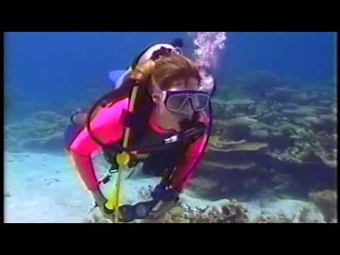 Waikiki Aquarium and Diving in Marshall Islands