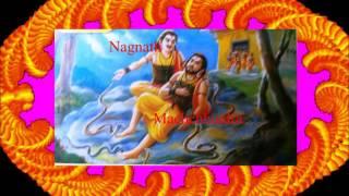 Shri Navanath Bhaktisar Adhyay 37