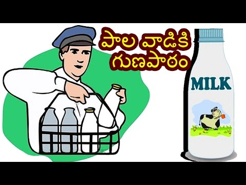 how to prepare egg fried rice in telugu pdf