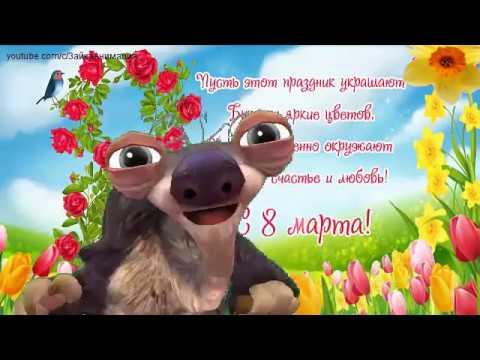 ZOOBE зайка  Шуточное поздравление с 8 Марта ! - Видео приколы ржачные до слез