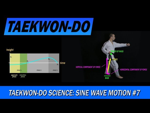 Taekwon-Do Science: Sine Wave Motion #7