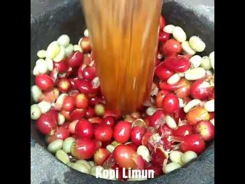 Proses Greenbean Kopi Limun