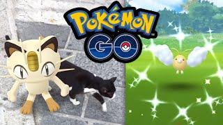 Es geht immer nur um das eine (um Shinys) | Pokémon GO Deutsch #1094