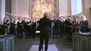 Oslo Vokalensemble: Stemning