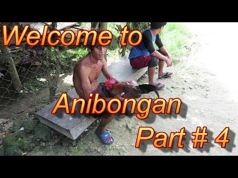 Mindanao : Anibongan Part #4