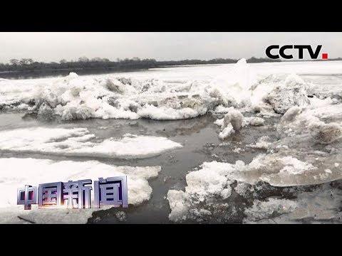 [中国新闻] 中俄界江乌
