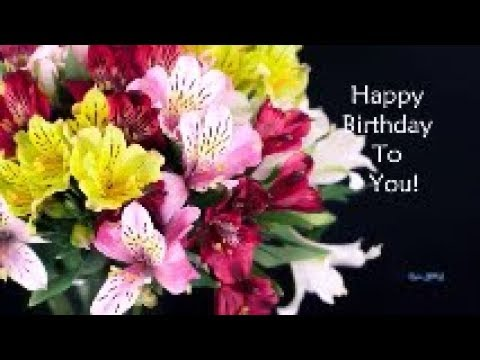 Happy Birthday Special Video