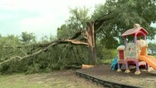 Storm damage snaps trees in Prosperity