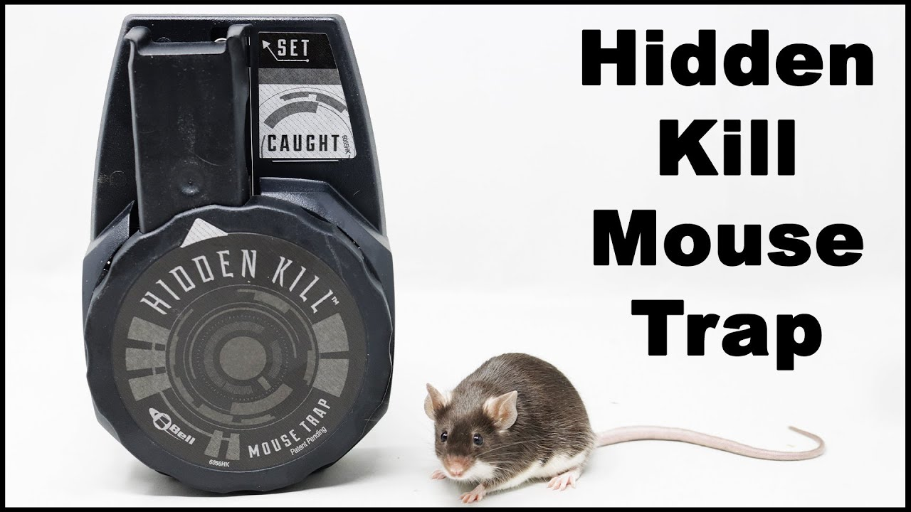 The Hidden Kill Mouse Trap Works Extremely Well In The Barn. Mousetrap Monday.