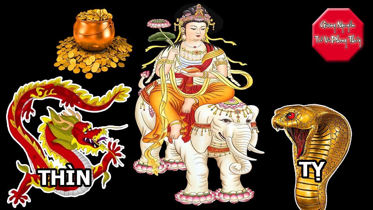 Phật Bản Mệnh Dẫn Dắt Tuổi Thìn, Tuổi Tỵ Gặt Hái Thành Công. Giang Nguyễn Tử Vi Phong Thủy