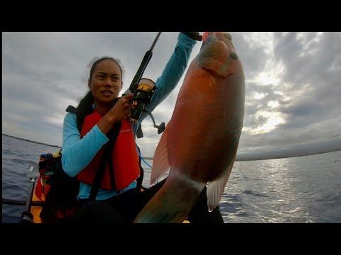 PENN SPINFISHER VI 4500 LIVE LINER + UGLY STIK TIGER ELITE ROD   HOBIE COMPASS   HAWAII FISHING  