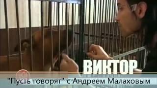 Пусть говорят (анонс на эфир от 24.08.2012)